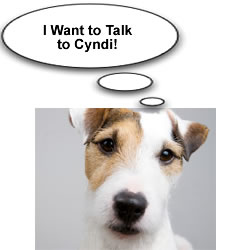 talk-to-cyndi